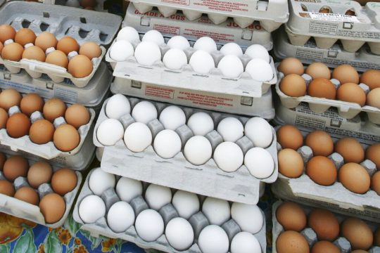 Eating Too Many Eggs Increases Heart Attack Risk, Study Says